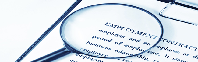 Kletter Law  Negotiation Of Employment Contracts